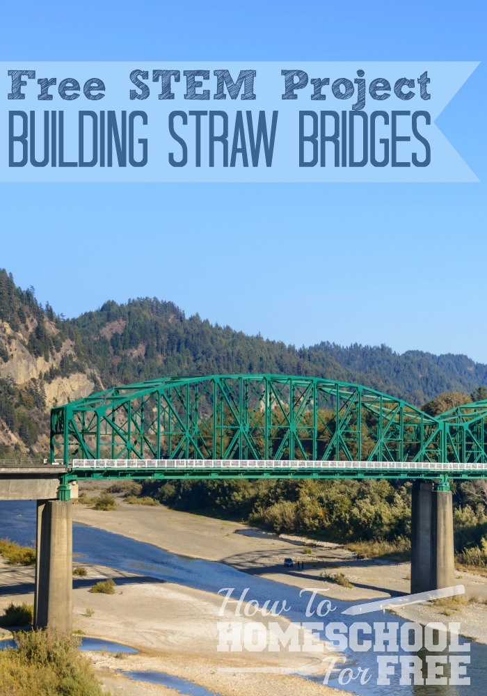 Learn about Building Bridges with this fun STEM Project!